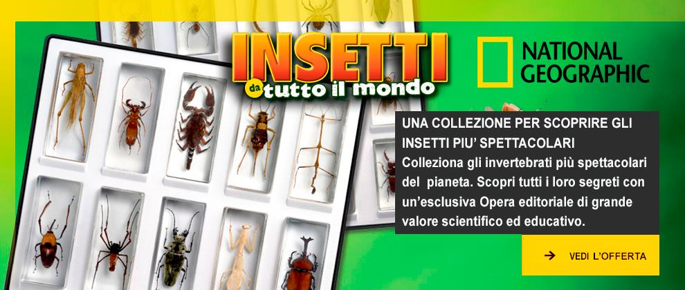 http://www.rbaitalia.it/wp-content/uploads/2019/01/caroselloInsetti2019b.png