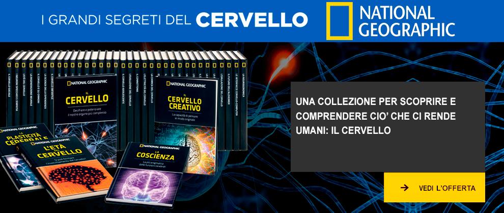 http://www.rbaitalia.it/wp-content/uploads/2019/02/caroselloCervello.png